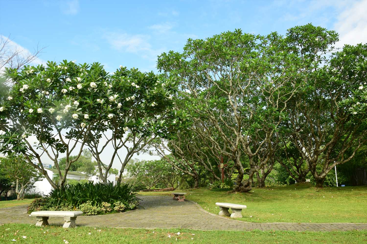 Mausoleum area